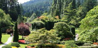 Butchart Garden. Photo by Christine Wagner